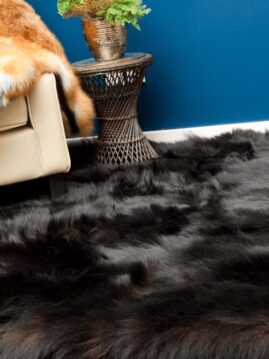 Black Bear Fur Carpet