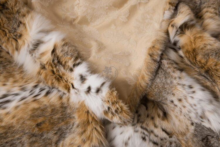 Bobcat Fur Blanket