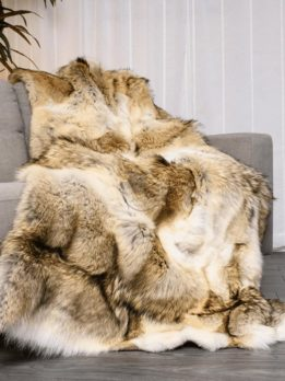 Coyote (AB Colour) Fur Blanket