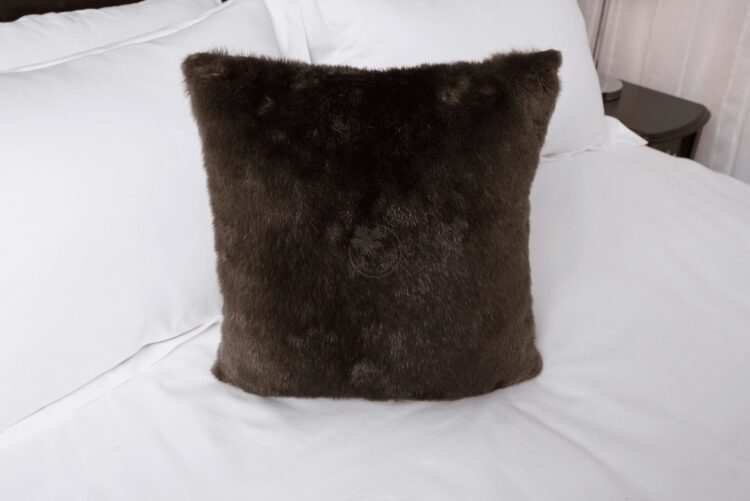 Otter Pillow