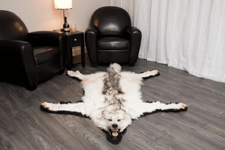Arctic Pale Wolf Skin Rug