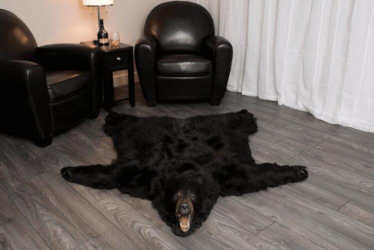 Black Bear Skin Rug