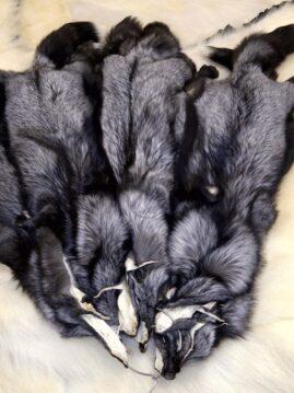 Silver Fox Hides