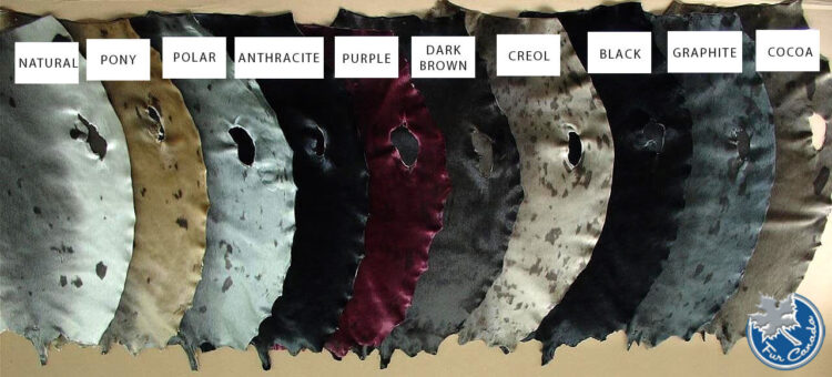 Seal Skin Colour Options