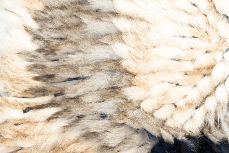 American Raccoon Blanket - Dancer A