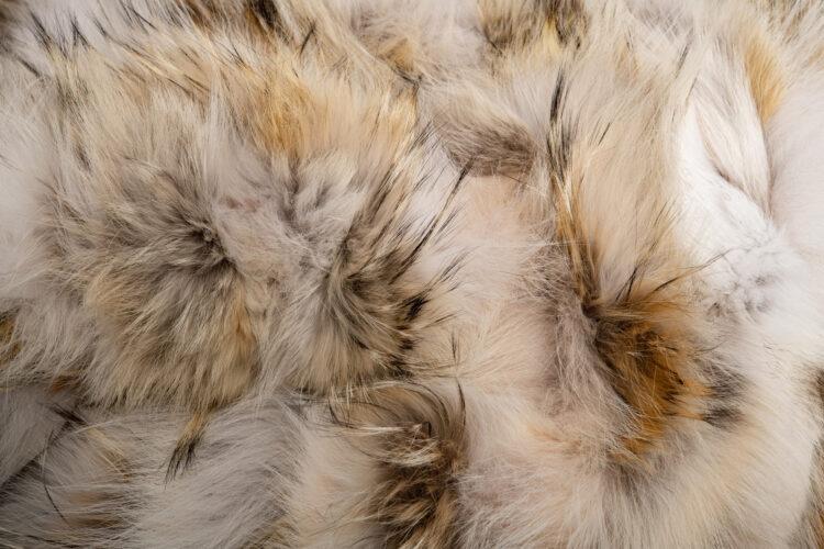Coyote Pieces Fur Blanket