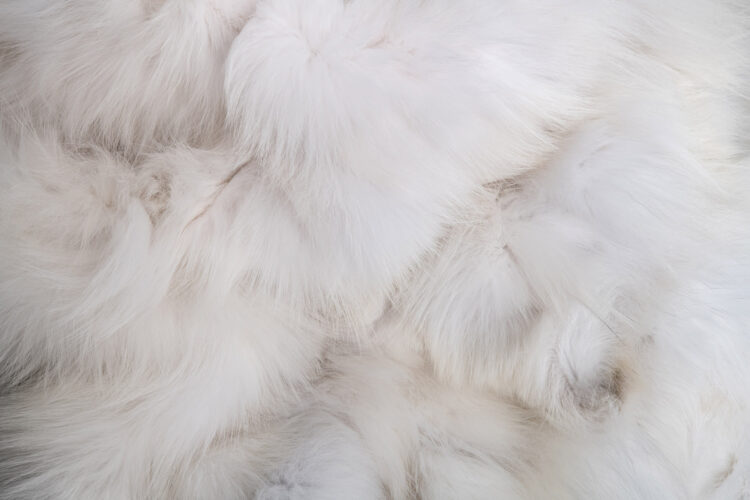 White Fox Pieces Fur Blanket